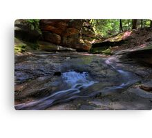 Hocking Hills Canvas Print
