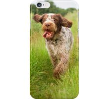 Brown Roan Italian Spinone in Action iPhone Case/Skin