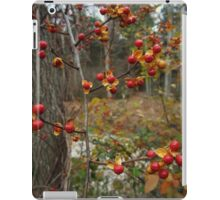 Autumn Bittersweet iPad Case/Skin