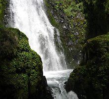 Susan Creek Falls by CatrinaM