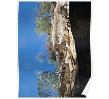 Carnarvon Gorge Reflection Poster