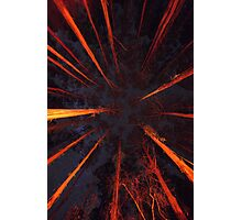 Forest Constellation Photographic Print