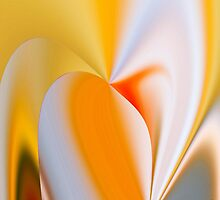 Full Bloom by Peter Stratton