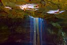 Cenote-3 by Zane Paxton