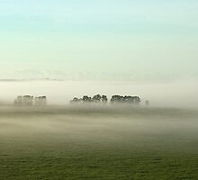 Endless Fog by Katherine Williams