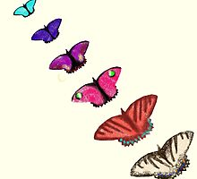 Butterfly stencils  by thebigG2005