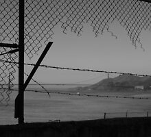 Alcatraz by Steve Giddings