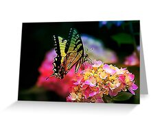 Butterfly on Pink Hydrangea Greeting Card