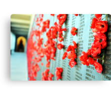 Wall of Honour Canvas Print