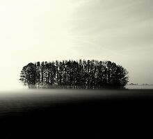 Standing Alone Together by LarsvandeGoor