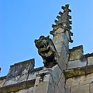Gargoyle - St Olaves, Marygate,York by Trevor Kersley