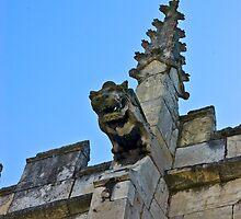 Gargoyle - St Olaves, Marygate,York by Trevor Kersley