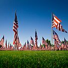 The Healing Field by Kory Trapane