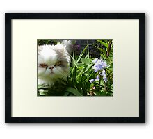 What Are YOU Doing In MY Garden? Framed Print