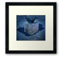 Ice Cube Framed Print