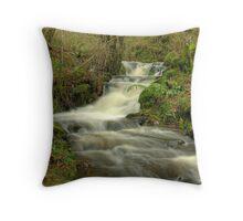 The Beck at High Dam Throw Pillow