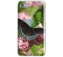 Red Spotted Purple iPhone Case/Skin