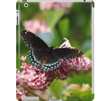 Red Spotted Purple iPad Case/Skin