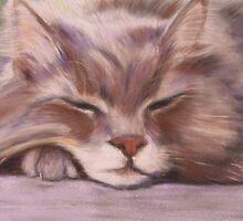 Sleeping Beauty  by BeenaKhan