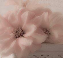 Dahlias - Oh So Soft! by Sandra Foster
