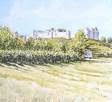 Chateau, Villebois Lavalette, France by FranEvans