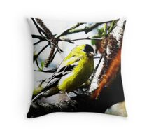 ~ Male American Goldfinch ~ Throw Pillow