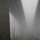 the bridge to nowhere by Anne Seltmann