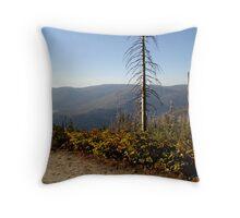 Yosemite Controlled Burn Throw Pillow