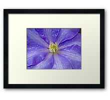 Bathed by nature Framed Print