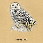 Snowy Owl by Revelle Taillon
