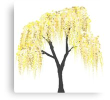 Yellow Willow Canvas Print