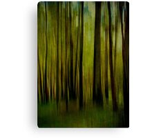 Night falls on the Forest Canvas Print