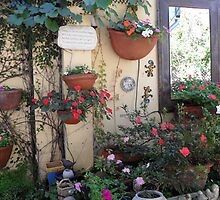 Small section of courtyard garden. by joycee