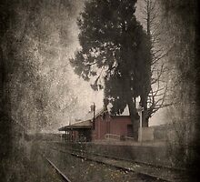 Carcoar, Railway Station by garts