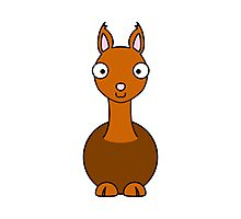 Cartoon Llama Photographic Print
