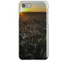 Harvest Time Sunset iPhone Case/Skin