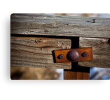Character of a Fence Canvas Print