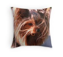 All Mops & Brooms Today Throw Pillow