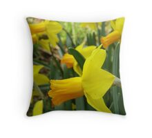 Standing out in the crowd. Throw Pillow
