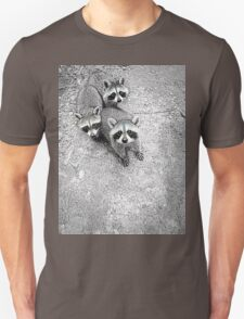 Which One Is The Cutest? T-Shirt
