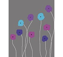 Purple Poppies Photographic Print