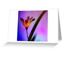 The Illuminated One Greeting Card
