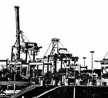 Port Botany cranes by Alexander Meysztowicz-Howen