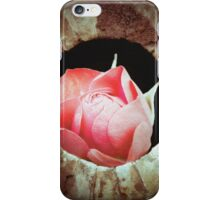 A rosey view iPhone Case/Skin