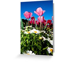 Capital Tulips Greeting Card