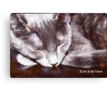 Tails of the kitten, dedicated to Monday's Canvas Print