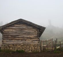The Shack In Fog by mohsensa