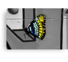 Urban Butterfly Canvas Print