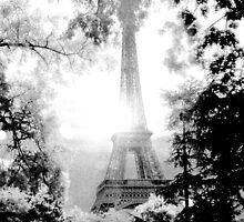 La Tour Eiffel  by Ruben Emanuel