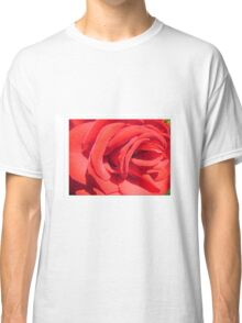 red rose flower close up photography Classic T-Shirt